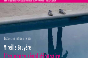 Psychanalyse politique Toulouse